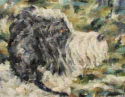 Painting of the head of a sheep dog