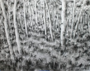 "Forest 20""x24"" charcoal"