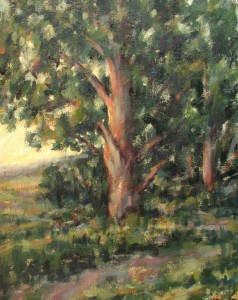 Hillside Tree  20x16 oil